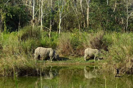 Chitwan National Park Tour
